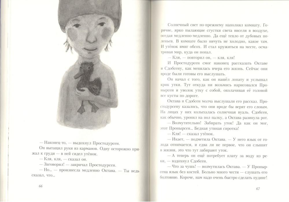 Prostodursen-zima-4