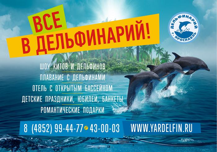Шоу-программа Ярославского дельфинария