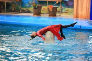 Музыка моря в Ярославском дельфинарии
