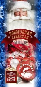 Новогодние каникулы в Ярославском дельфинарии