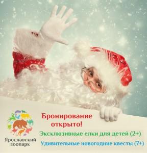 Новогодние ёлки и квесты в Ярославском зоопарке, 2019 и 2020