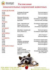 Показательные кормления животных в Ярославском зоопарке