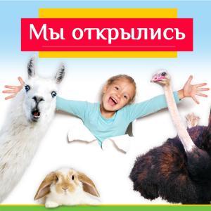 Зоопарк открыт для посещения
