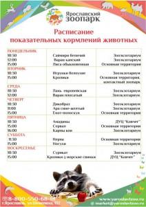 Показательные кормления животных Ярославского зоопарка
