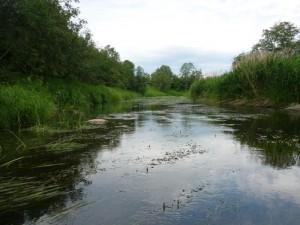 Юхоть - заповедная река
