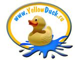Жёлтая утка