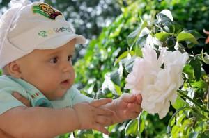 Павел-Рафаил в Губернаторском саду