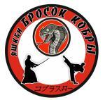 Бросок кобры, Ярославская школа каскадёров и боевых искусств