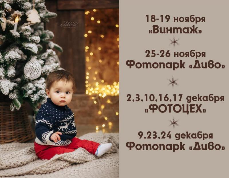Татьяна Бабкова, новогодний фотопроект 2017-2018