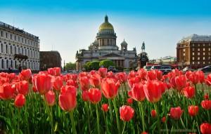 День Победы в Петербурге - лайт